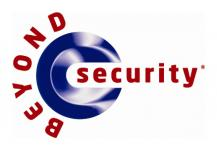 Beyond Security—Silver (2013)