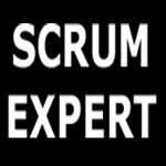 ScrumExpert.com logo